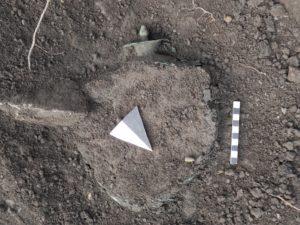 Particolare di situla con coperchio nello scavo